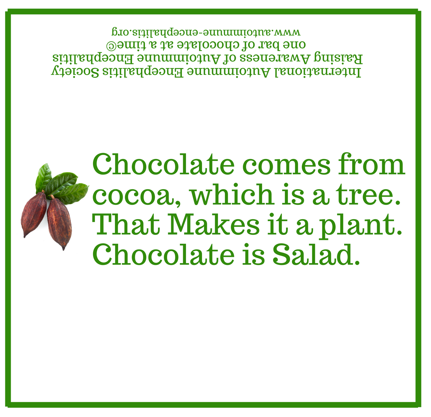 Chocolate is a salad  Candy Wrapper 5 9 16  x 5 3 8  1 - Downloads