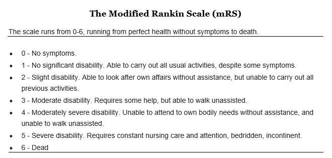 modified rankin scale