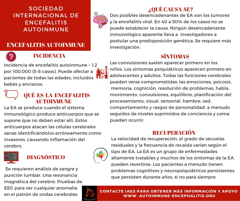 ENCEFALITIS AUTOINMUNE infographic